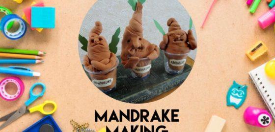 Craft Club: Mandrake Making